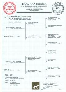 Stamboom Torro v. Rusticana, jugendweltsieger 2012, Campionata dell' Anno 2012, Def. Noors Kampioen 2013. HD Vrij, Spondylose vrij en hart 0